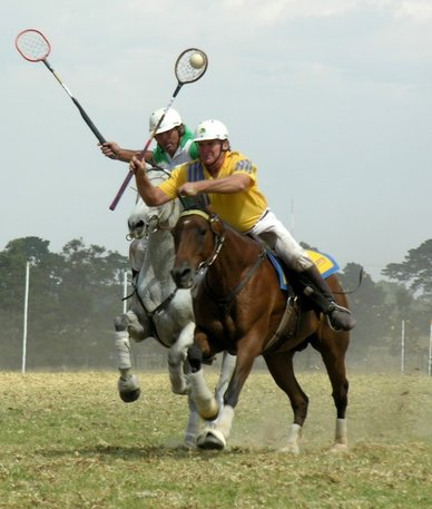 Learn To Play Polo In South New Jersey 1 Day Clinic