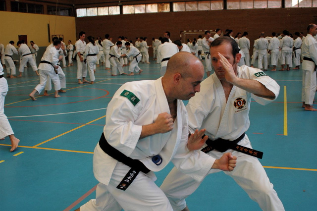 Entrenando técnicas con Juan Luis Escot (4º Dan, Cartagena)