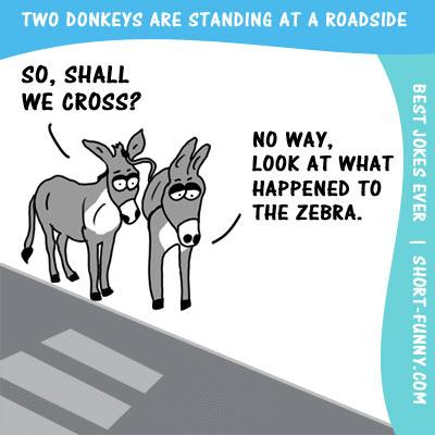 Clever Jokes That Make You Sound Smart Reader S Digest