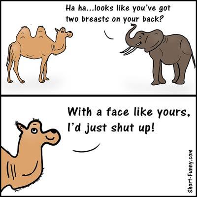 22 Best Jokes Images Jokes English Jokes Funny Jokes