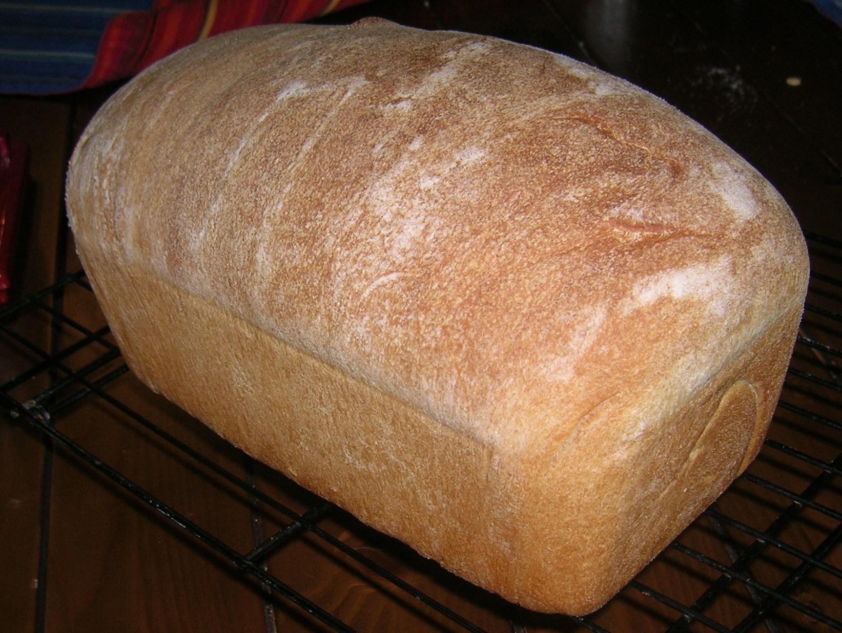 whole wheat bread BBA
