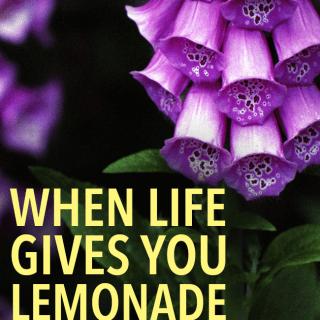 When Life Gives You Lemonade