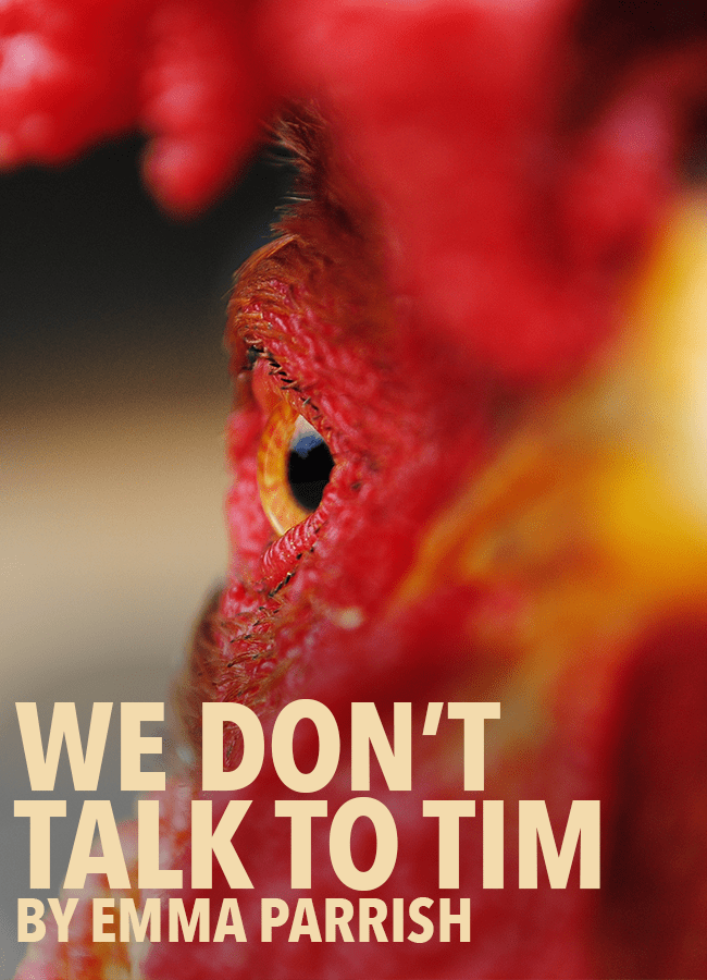 We Don't Talk to Tim