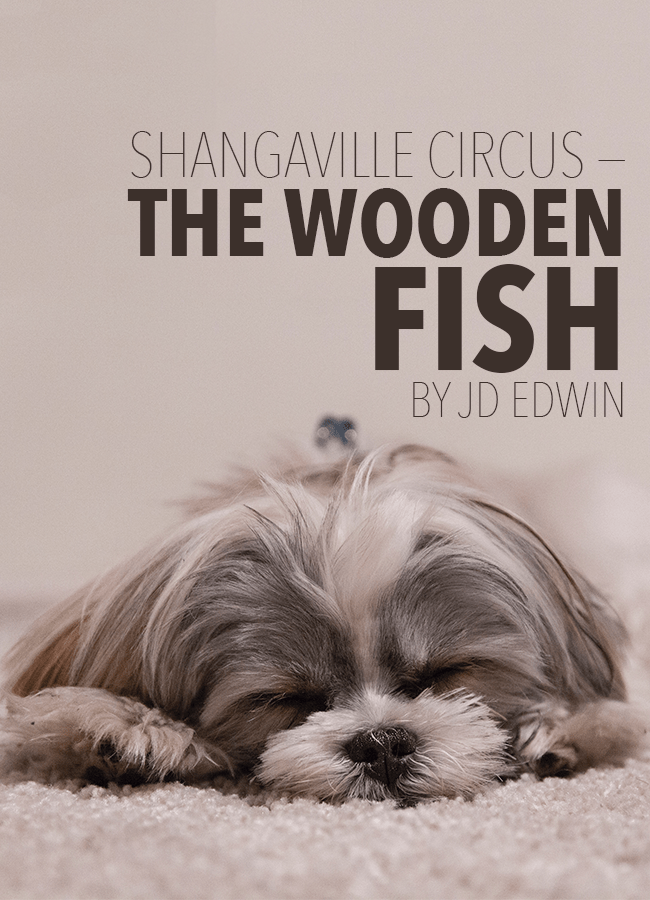 Shangaville Circus — The Wooden Fish