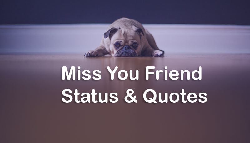 Image of: Best Friend Short Status Quotes Missing Friend Status Miss My Best Friend Quotes