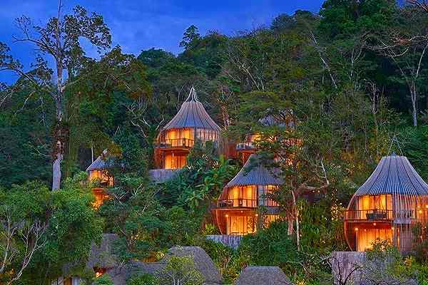 Tree Pool House2