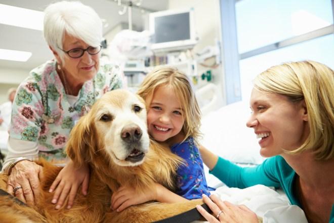 Intervenciones en el ámbito hospitalario