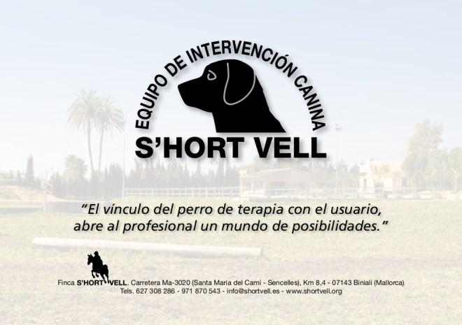 Revista Intervenciones con Perros (12/12)