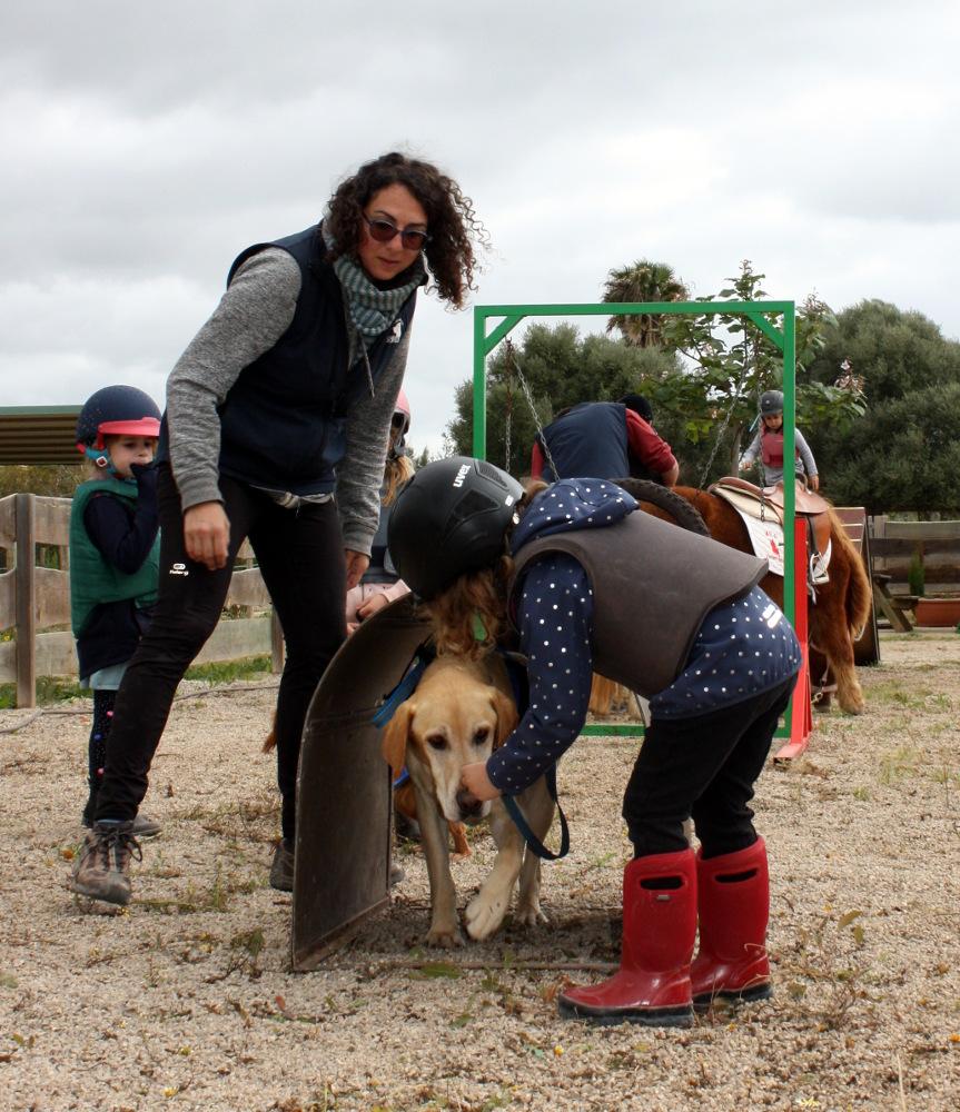 Postgrado #UIB Intervenciones Asistidas con Animales 2020