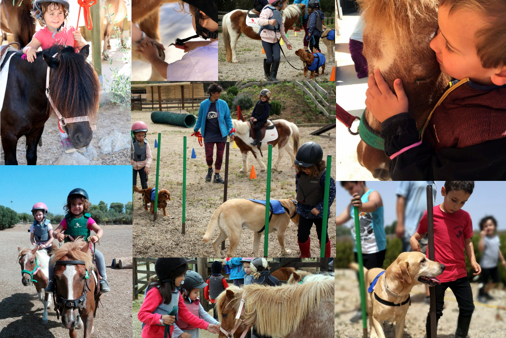 Collage Kids&Ponies Kids&Dogs (web)