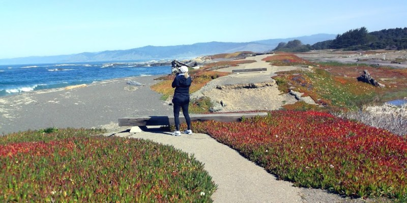 Fort Bragg CA, a No-Drive Weekend