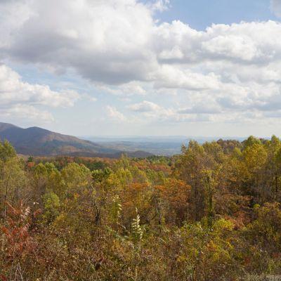 Bluegrass in the Blue Ridge
