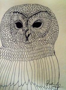 OWL 3 by shoshanah marohn 2016.JPG