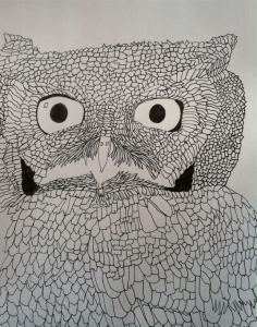 screech owl drawing shoshanah marohn 2016