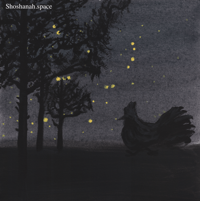 rooster in the night