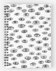 winking eye notebook RB