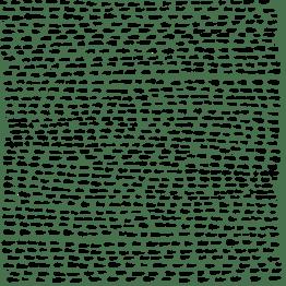 dotty lines