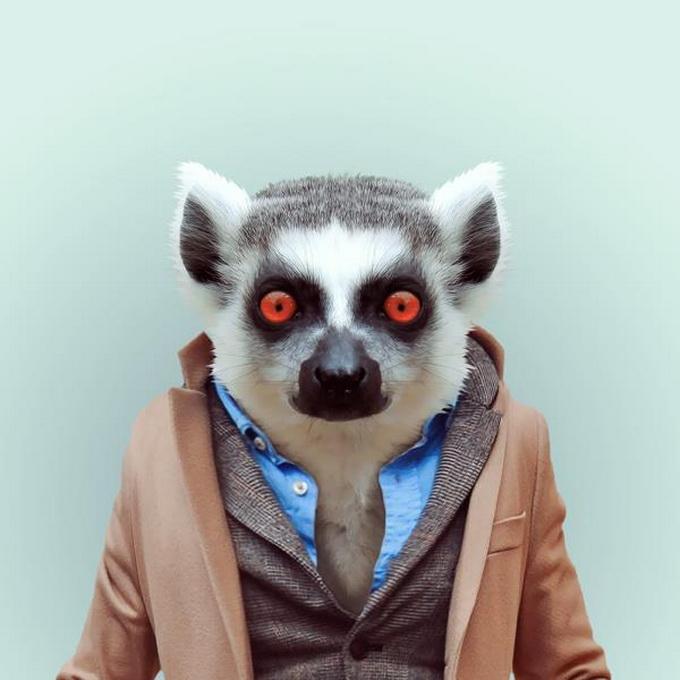 Zoo portretele lui Yago Partal
