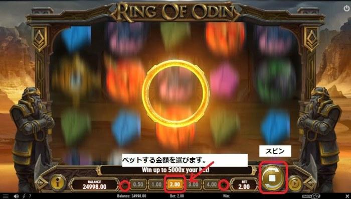 RING OF ODIN 遊び方