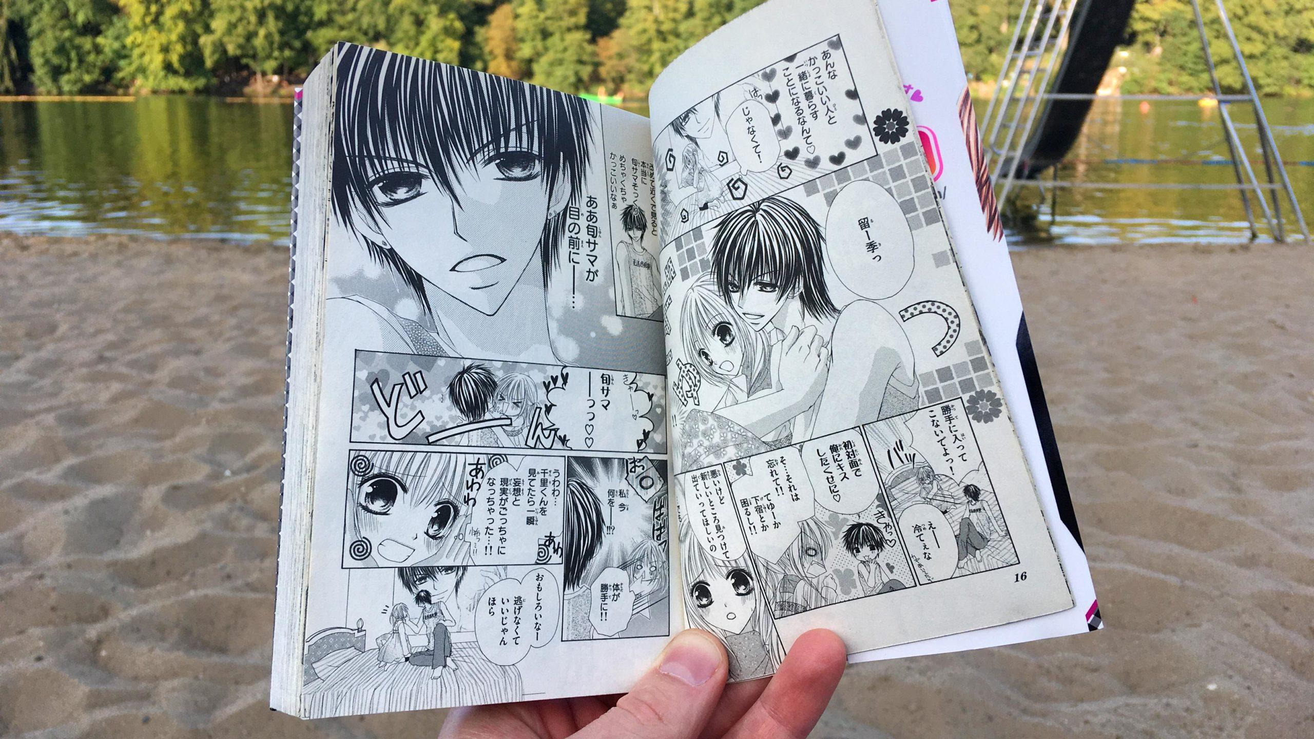 車谷晴子:「極上男子と暮らしてます。」(2007)