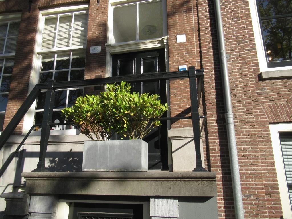 アムステルダムで飾られていたスキミア