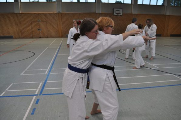 Bunkaiübungen IV SCB-Jubiläumslehrgang 22.9.17 Foto G.Giese