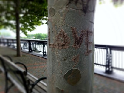 The sometimes when love does not look lovely #iphoneography #photography