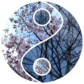 Yin and Yang, fall and spring