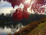 shouse-pond-fall