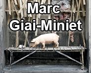 marc giai-miniet link picture