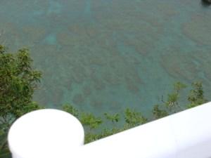 奄美大島のゲストハウス「昭和荘」からレンタルバイクで行ける絶景スポット