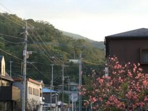 奄美大島南部・古仁屋「高千穂神社」