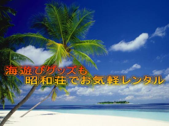 奄美大島のゲストハウス「昭和荘」の海遊びレンタルグッズ