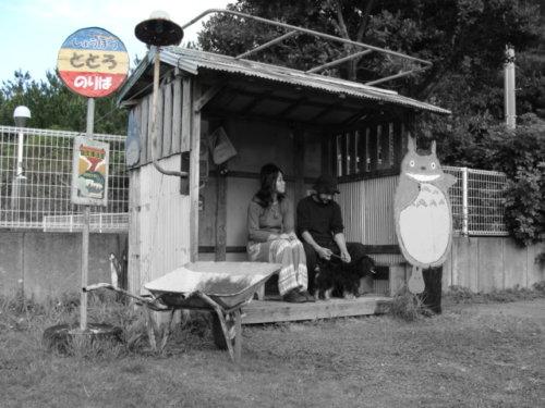 奄美大島南部古仁屋・トトロのバス停