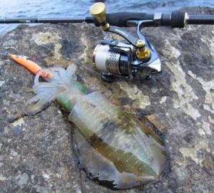 昭和荘レンタル釣り具セットでイカ釣り