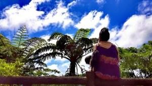 奄美の梅雨明け間近の空を眺める