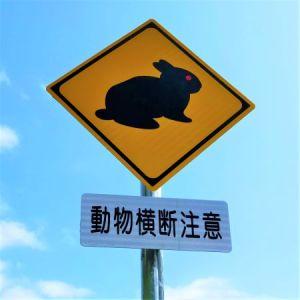 新しいアマミノクロウサギ道路標識