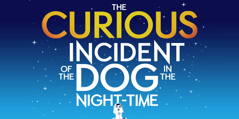 Image result for the curious case of the dog in the nighttime