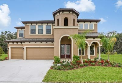 13713 Moonstone Canyon Drive Riverview FL 33579