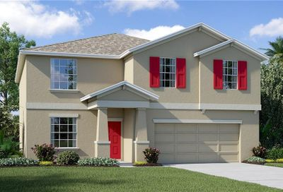 1917 Broad Winged Hawk Drive Ruskin FL 33570