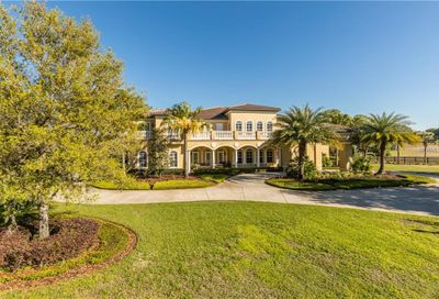 12213 Stonelake Ranch Boulevard Thonotosassa FL 33592