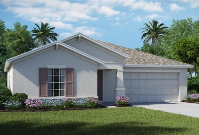 10209 Strawberry Tetra Drive Riverview FL 33578