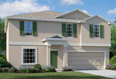 10207 Strawberry Tetra Drive Riverview FL 33578