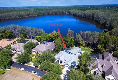 21001 Lake Vienna Drive Land O Lakes FL 34638