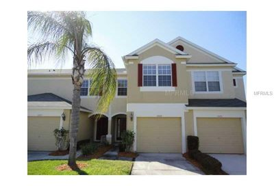 1023 Vista Cay Court Brandon FL 33511