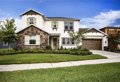 13217 Fawn Lily Drive Riverview FL 33579