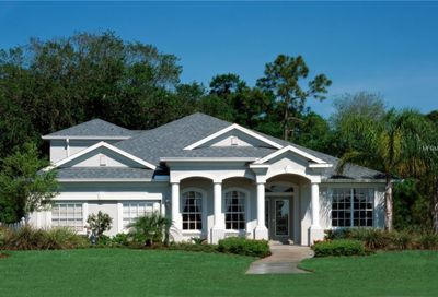 6131 Bridleford (Preconstruction) Drive Wesley Chapel FL 33545