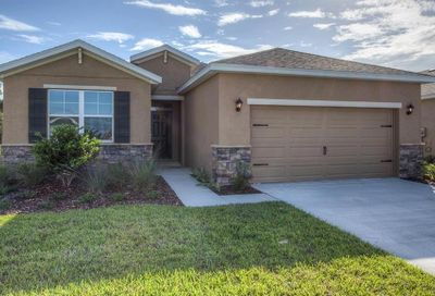31454 Tansy Bend Wesley Chapel FL 33545
