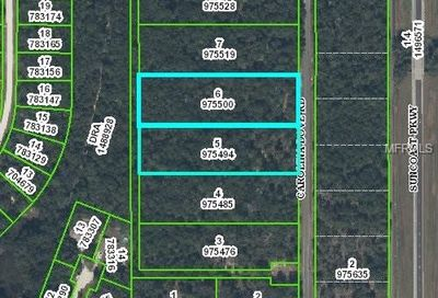 Carolina Dove Road Weeki Wachee FL 34614