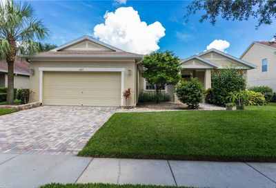11817 Autumn Creek Drive Riverview FL 33569